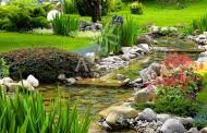 Tổng hợp mẫu cảnh quan sân vườn đẹp