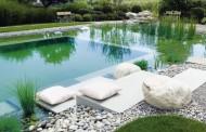 Bể bơi sinh thái, thiết kế bể bơi tự nhiên cho ngôi nhà lý tưởng