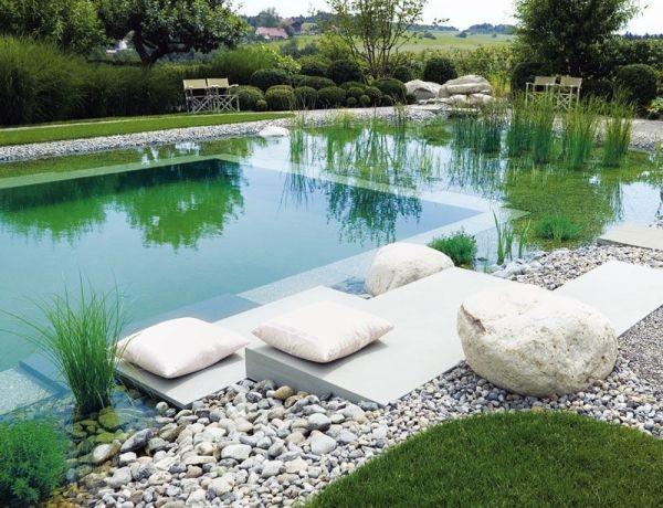 hồ bơi sinh thái