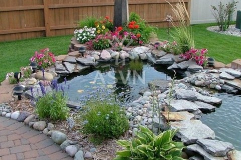 Tips To Make Ornamental Fish Pond